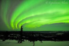 Northern lights photo, White Mountains, Alaska. (Skolai-Images) Tags: winter alaska landscapes skies nighttime scenics northernlights auroraborealis carldonohue skolaiimages