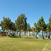 Port of San Diego's Public Parks