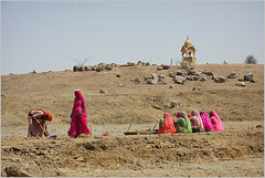matter of survival, thar desert (nevil zaveri) Tags: travel portrait people woman india heritage tourism rural photography blog workers women ruins photographer village veil desert photos embroidery stock culture images villages clothes photographs photograph labour worker zaveri jaisalmer thar stockimages bangles peopleatwork travelogue nevil labours masonary cenataph khuri cenotaphs theverybestofme nevilzaveri