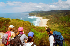 Royal National Park, Sydney, Coast Track (Cecilia Temperli) Tags: film minolta kodak hiking minoltax700 sydney australia bushwalking nsw newsouthwales kodakgold100 wollongong royalnationalpark coasttrack gariebeach sydneycoastwalks