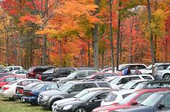 Pretty Parking (peterkelly) Tags: auto autumn trees ontario canada fall car digital forest parkinglot automobile northamerica rockton