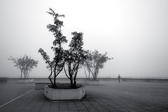 November solitude