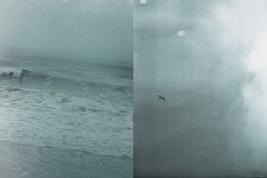 That ocean thing. (Yuko Nagai) Tags: sea sky japan diptych surf grainy