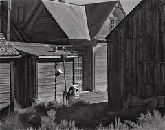 Bodie (Looking Glass Magazine) Tags: photography large format bodie btzs largeformat8x10