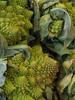 Romanesco Broccoli (failing_angel) Tags: paris bastillemarket boulevardrichardlenoir romanescobroccoli romancauliflower marchébastille 200912 brassicaolerace