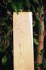 04580007-84 (jjldickinson) Tags: olympusom1 fujicolorsuperiaxtra400 roll392 promastermcautozoommacro2870mmf2842 promasterspectrum772mmuv wrigley wood cherry board printmaking woodblock mokuhanga woodgrain ganahllumbercompany longbeach