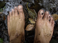 Barefoot marsh (bfe2012) Tags: boy feet nature wet grass leaves forest foot freedom toes mud hiking indian dirt swamp barefoot barefeet hiker marsh muddy marshland ankles barefooted muddyfeet barefooting barefoothiking barefooter