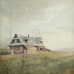 Mountain silence (Weisimel) Tags: house mountains nature birds barn vintage square landscape wooden textures tatry tatra zakopane flypaper murzasichle lemisiewicz