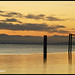 Looking For A Great Sunset In Richmond - Garry Point 8966e
