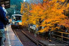 Kibuneguchi Station / Kyoto, Japan (yameme) Tags: travel japan train canon eos maple  kansai  keihan   kibune kurama eiden  24105mmlis  5d3 5dmarkiii kibuneguchistation