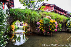 Ancient Stone Bridge @ Lijiang (Feng Wei Photography) Tags: china old morning travel bridge vacation house flower color tourism water beautiful beauty horizontal architecture river relax ancient scenery colorful asia arch tour view traditional scenic culture peaceful tranquility unesco serenity vista serene tradition yunnan tranquil lijiang waterway dayan