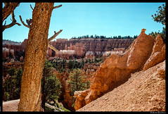 Bryce Canyon #2 (msciarroni) Tags: usa events places brycecanyon viaggiodinozze