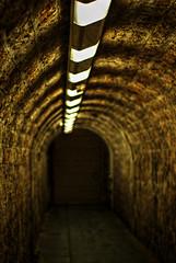 At the end of the tunnel  342-366 #3 (Samyra Serin) Tags: france 50mm europe pentax gimp potd drago 2012 year3 valdemarne aphotoaday alfortville day342 project365 fattal qtpfsgui samyras pentaxasmc50mmf17 k200d mantiuk06 shuttercal day1072 reinhard05 luminancehdr mantiuk08 samyraserin samyra008 noscreenchallenge
