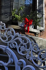 Railings and Ribbon (AntyDiluvian) Tags: christmas street boston stairs restaurant steps decoration ribbon railing ornate southend rowhouse curlicue unionpark tremontstreet