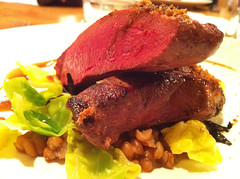Wild duck breast, tonka, trompettes and sprout leaves