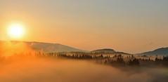 direkt vor der Haustr... (Mariandl48) Tags: sonnenaufgang morgenstimmung nebel vgel sommersgut wenigzell steiermark austria