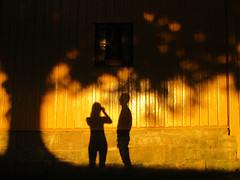 (SofiDofi) Tags: shadows silhouettes m self yellow house light sunset sunlight warmlight evening beautifulevening gamlebyen fredrikstad gamlefredrikstad walk stroll latenightstroll summer2016 neighborhood august tree golden