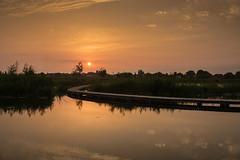 sunrise (Marco Nedermeijer) Tags: sunrise netherlands landscape barendrecht sun morning