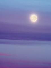 Purple Sky (Ben Nakagawa) Tags: cloud f56 morning purple moon sky zuiko180mmf28