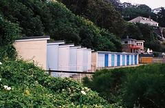 St Margarets Bay - Kent (jcbkk1956) Tags: huts stmargaretsbay kent bushes film 35mm 45mmf35 analog zonefocus zeiss ikon contina agfa200 undergrowth worldtrekker beachhuts pov