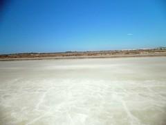 Sal (sacipere) Tags: tavira portugal saline sal salt salz