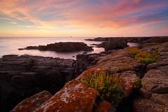 Coucher de soleil aux Chancrelles ~ le d'Yeu [ Vende ~ France ] (emvri85) Tags: iledyeu vende mer sea seascape d800e zeiss leefilters sunset bluehour heurebleue coucherdesoleil longexposure poselongue