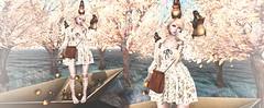 Start to Autumn ( . ) Tags: secondlife sl ss snapshot secondlifefashion secondlifeblog blog blogger fashion shinyshabby cestlavie wasabipills ohmai halfdeer anc autumn event          japan