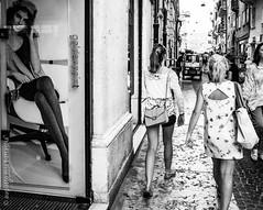 Verona, Italy (Mia Battaglia photography) Tags: verona camera:model=penf exif:focallength=17mm exif:aperture=50 exif:model=penf exif:isospeed=400 exif:lens=olympusm17mmf18 camera:make=olympuscorporation exif:make=olympuscorporation