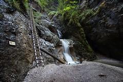 Ravine Sucha Bela (Mariusz Petelicki) Tags: sowacja slovakia sowackiraj slovakparadise ravine suchabela