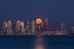 San Diego Harvest Moon (without reservation) Tags: sandiego california downtownsandiego downtown skyline harvestmoon fullmoon sonya7rii city night