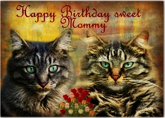 Happy Birthday Mommy !