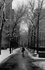 out in the cold (Brian Burke CT) Tags: new leica york city white black film canon 50mm village kodak manhattan trix east analogue lower f18 range finder copy witha iif