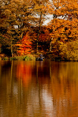Red Tree (juliereynoldsphotography) Tags: autumn lake reflections fisherman redtree juliereynolds carrmilldamn