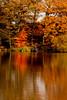 Red Tree (juliereynoldsphotography) Tags: autumn lake reflections fisherman redtree juliereynolds carrmilldamn
