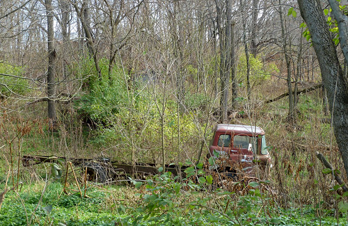 Ford C-8000 Stranded In The Jungle