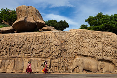 Arjuna's penance, Mahabalipuram (Marji Lang) Tags: travel people woman dog india heritage monument water rain puddle site women drink indian drinking unesco worldheritagesite historical widow saree sari sculptures tamil tamilnadu mahabalipuram basrelief mamallapuram arjuna tamoul travelphotography pallava descentedugange republicofindia panchatantra arjunaspenance descentoftheganges ef247028l indiansubcontinent travelanddocumentaryphotography marjilang pnitencedarjuna