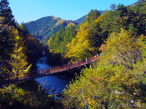 秋色の秋川渓谷 (Autumn Colored Akigawa Gorge)