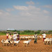 AMISOM Djiboutian Contingent in Belet Weyne 19