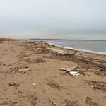 Beach at Morgan Mudflats thumbnail
