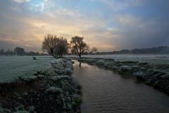 Richmond Park Sunrise (pt101) Tags: sunrise richmondpark canonef1740mmf4l