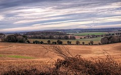 Winter Landscape near Farley Mount, Hampshire