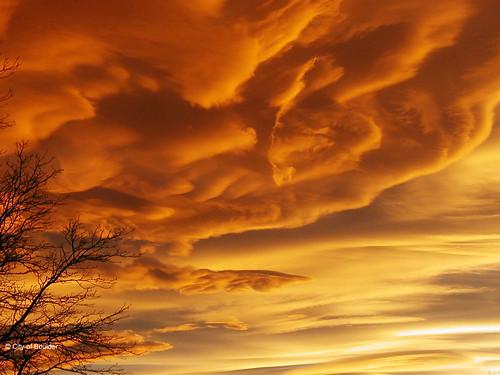 Photo - Sunset