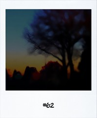 "#DailyPolaroid of 29-11-12 #62 • <a style=""font-size:0.8em;"" href=""http://www.flickr.com/photos/47939785@N05/8257552996/"" target=""_blank"">View on Flickr</a>"