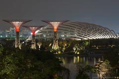 pitalenko-4255.jpg (pitalenko) Tags: city night singapore laser singapur singapure arhitech