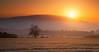 Frosty Dawn (Natasha Bridges) Tags: morning trees winter mist sunrise dawn countryside frost shropshire fields wrekin