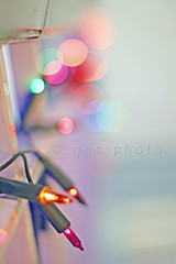 Christmas... (Gregoria Gregoriou Crowe) Tags: christmas color college stairs 50mm lights bokeh festiveseason sonyalpha lcfe gettyimagesirelandq12012 yahoo:yourpictures=yourbestphotoof2012 yahoo:yourpictures=christmaslights