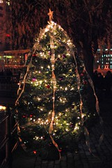 The Providence/Warwick Convention and Visitors Bureau Christmas Tree.