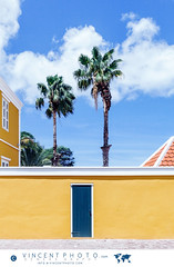 Restored yellow house  in the Pietermaai District in the city of Willemstad in Curacao. (Vincent Demers - vincentphoto.com) Tags: abcislands amriquedusud antilles antillesnerlandaises architecture architecturecoloniale building btiment carabes caribbean caribbeanisland colonialarchitecture colorful color colourful curacao curaao destinationdevoyage destinationtouristique dutchcaribbean dutchcaribbeanisland historicpietermaaidistrict home house iledescarabes jaune kingdomofthenetherlands maison multicolore neighborhood netherlandsantilles palmtree palmier photodevoyage photographiedevoyage pietermaai pietermaaidistrict quartier quartierpietermaai royaumedespaysbas southamerica tourism tourisme travel traveldestination travellocation travelphoto travelphotography trip voyage willemstad yellow cw