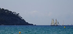 Sailing boat (Hlne_D) Tags: hlned france provencealpesctedazur provence paca var saintcyrsurmer stcyrsurmer stcyrmer leslecques mermditerrane mediterraneansea mditerrane sea mer sailingboat voilier bateau boat aviary
