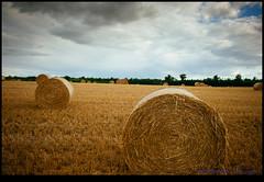 160713-9662-XM1.jpg (hopeless128) Tags: france sky eurotrip 2016 strawbales haybales field bioussac aquitainelimousinpoitoucharen aquitainelimousinpoitoucharentes fr